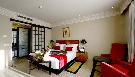 Suite Pasha