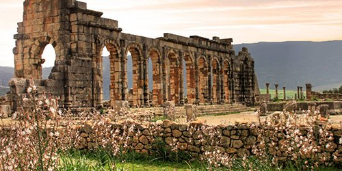 Discovery of Volubilis